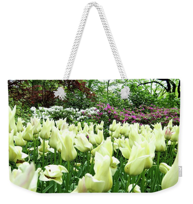 Central Park Weekender Tote Bag featuring the photograph Central Park Tulips by Lorraine Devon Wilke