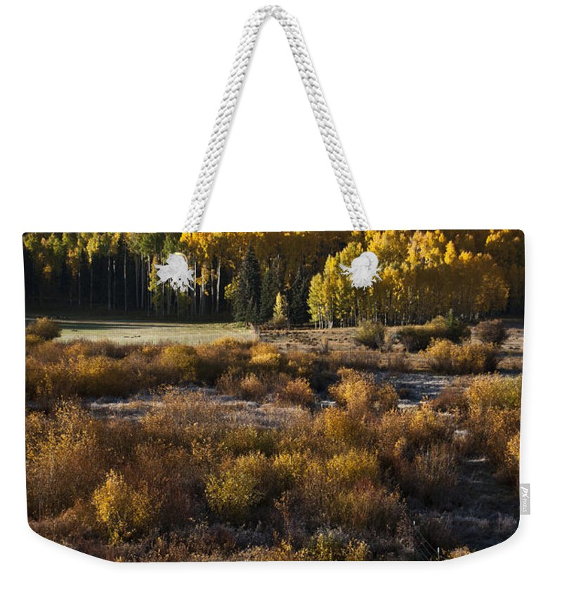 Aspen Weekender Tote Bag featuring the photograph Changing Season by Jeffrey Kolker