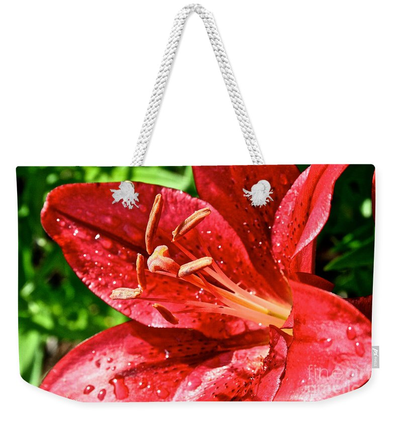 Outdoors Weekender Tote Bag featuring the photograph Cherry Red Lily by Susan Herber