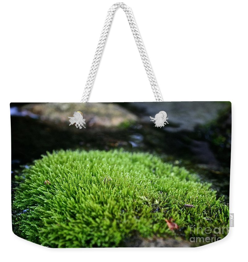 Moss Weekender Tote Bag featuring the photograph Chia Rock by Susan Herber