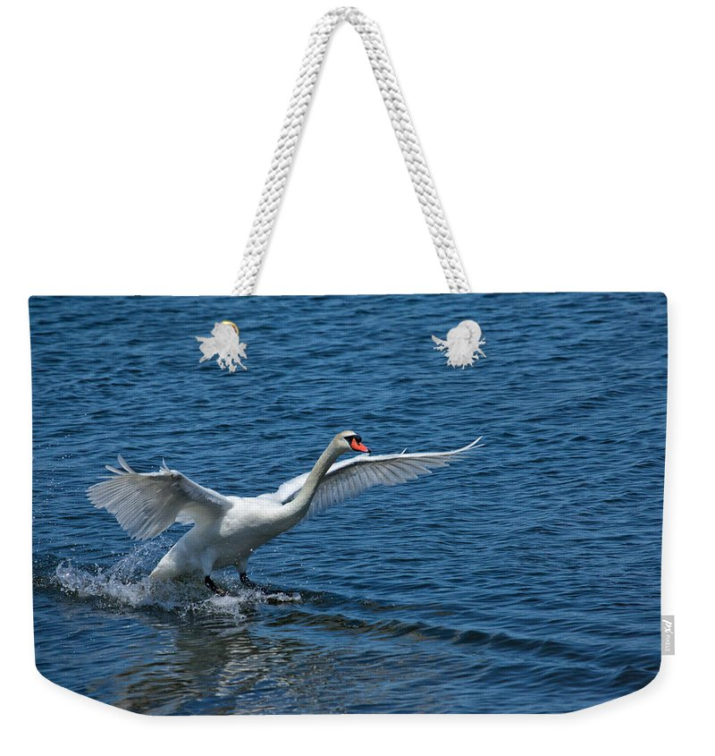 Swan Weekender Tote Bag featuring the photograph Clean Landing by Karol Livote