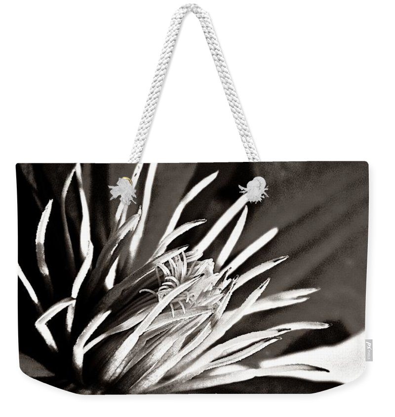 Nature Weekender Tote Bag featuring the photograph Clematis Detail by Chris Berry