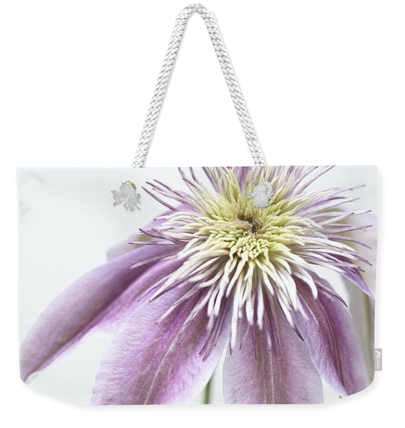 Flower Weekender Tote Bag featuring the photograph Clematis Josephine by Fran Gallogly