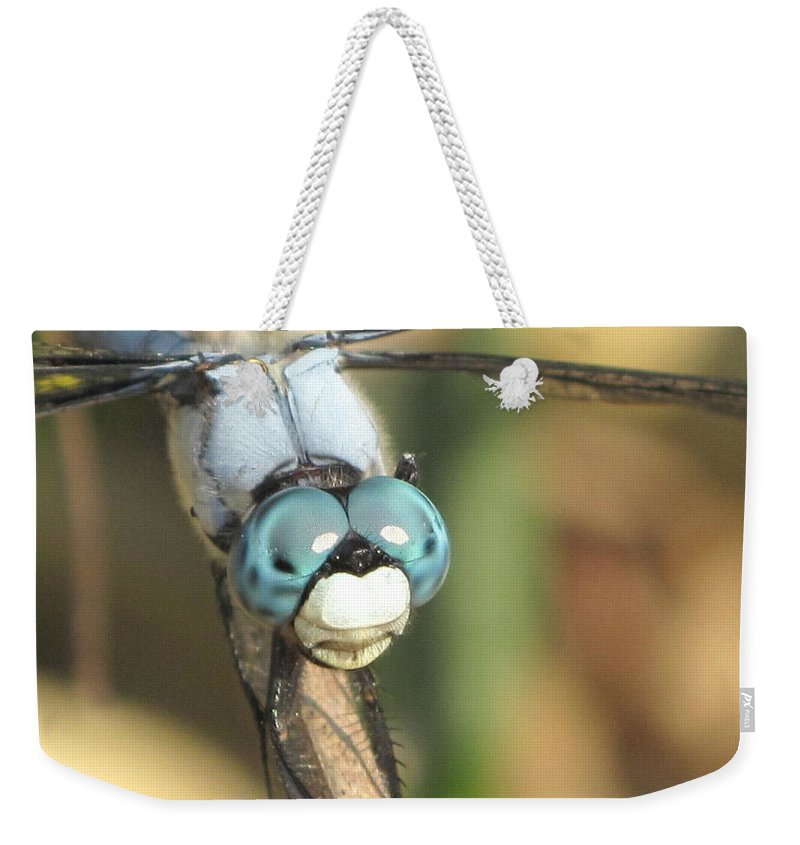 Weekender Tote Bag featuring the photograph Close Up Blue Eyes by Michele Nelson