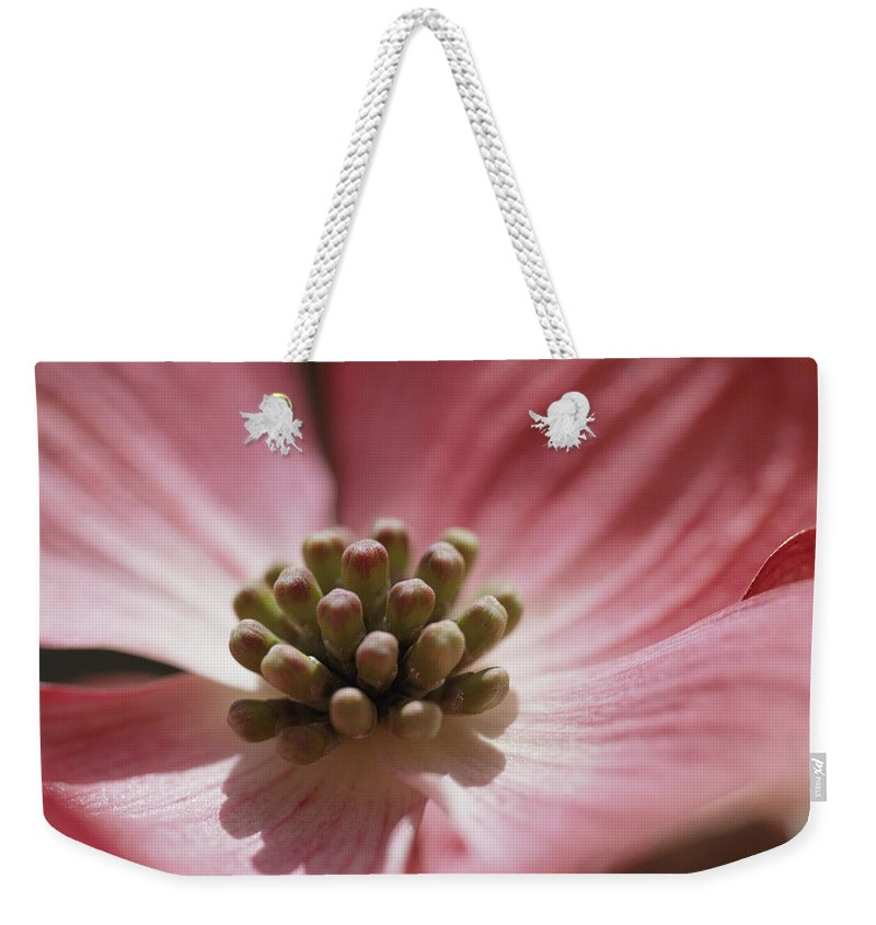 Plants Weekender Tote Bag featuring the photograph Close View Of A Pink Dogwood Blossom by Darlyne A. Murawski
