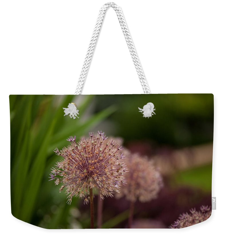 Flower Weekender Tote Bag featuring the photograph Cluster Of Beauty by Mike Reid