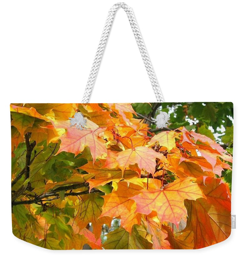 Cluster Of Color Weekender Tote Bag featuring the photograph Cluster Of Color by Will Borden