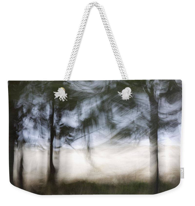 Coast Weekender Tote Bag featuring the photograph Coastal Pines by Carol Leigh