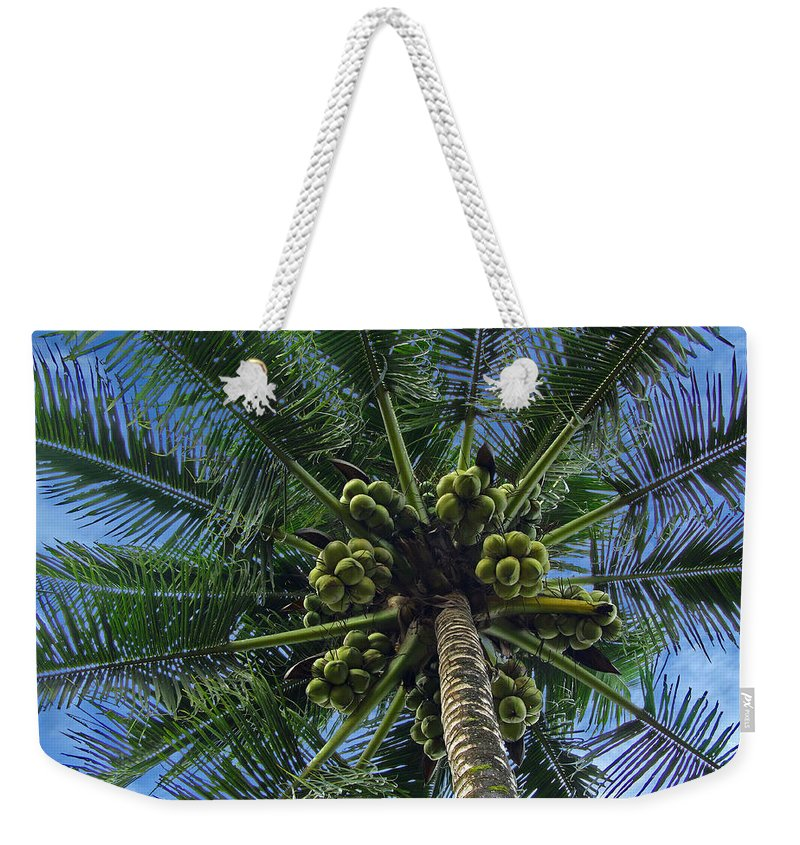Asia Weekender Tote Bag featuring the photograph Coconut Palm by Mark Sellers