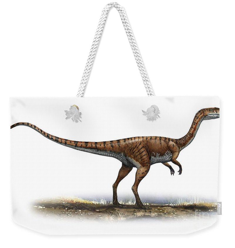Horizontal Weekender Tote Bag featuring the digital art Coelophysis Bauri, A Prehistoric Era by Sergey Krasovskiy