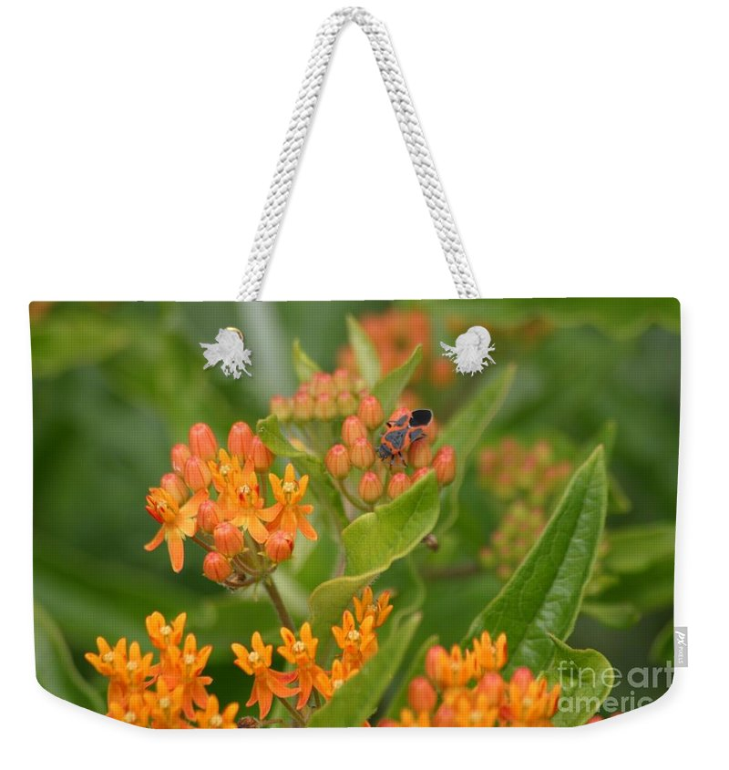 Orange Flower Weekender Tote Bag featuring the photograph Color Coordinated by Living Color Photography Lorraine Lynch