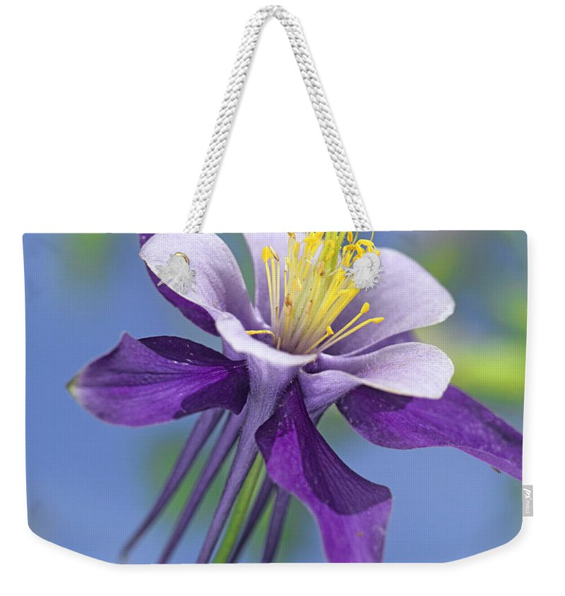 00176669 Weekender Tote Bag featuring the photograph Colorado Blue Columbine Close by Tim Fitzharris