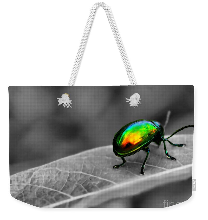 Bug Weekender Tote Bag featuring the photograph Colorful Bug by Gaby Swanson