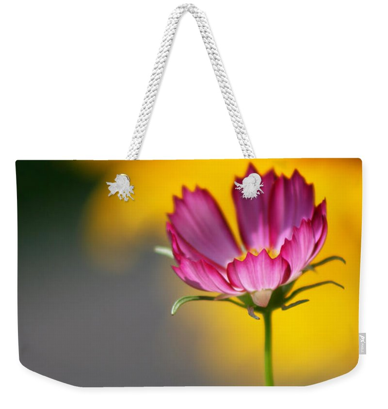 Cosmos Weekender Tote Bag featuring the photograph Colorful Cosmos And Black Eyed Susan Background by Kathy Clark