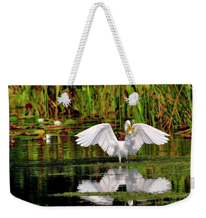Great White Egret Weekender Tote Bag featuring the photograph Colorful Morning At The Wetlands by Bill Dodsworth