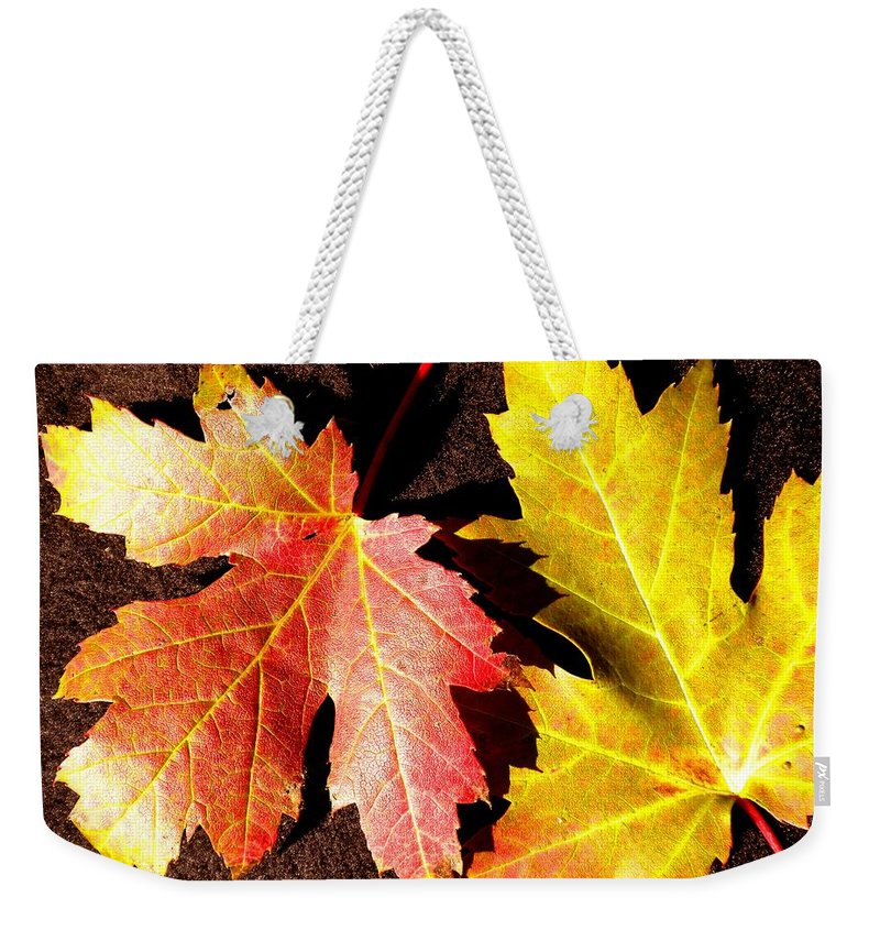 Maple Leaf Weekender Tote Bag featuring the photograph Colorful Pair by Renate Nadi Wesley
