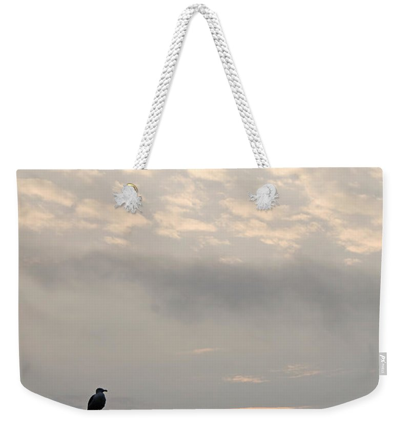 Bird Weekender Tote Bag featuring the photograph Come Fly With Me by Jeff Galbraith