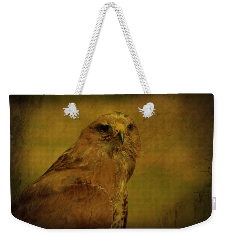 Common Weekender Tote Bag featuring the photograph Common Buzzard by Dave Godden
