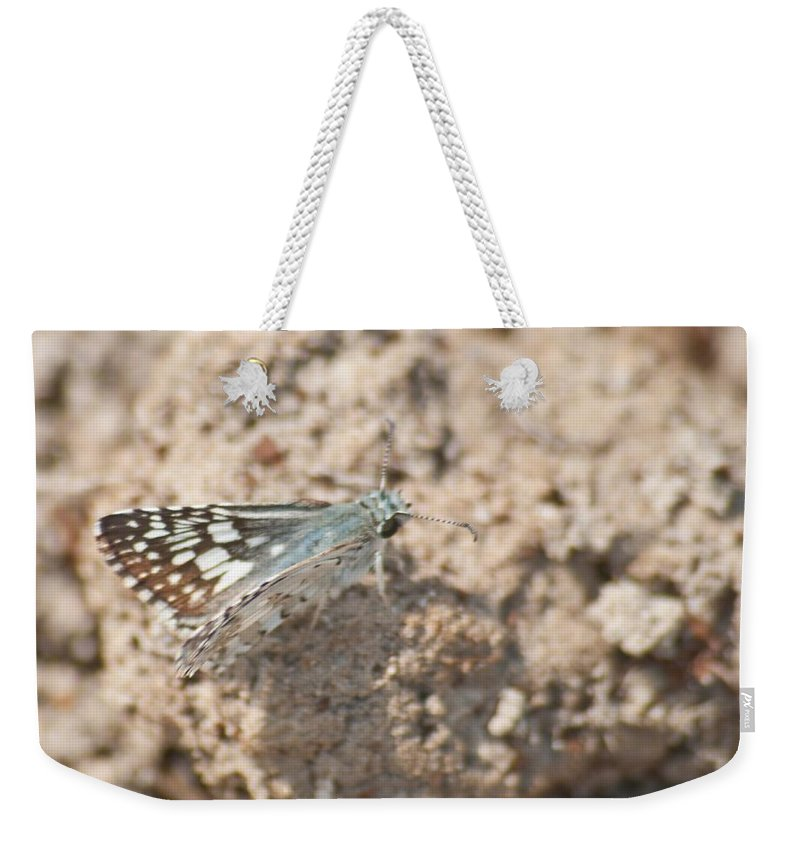 Adult Weekender Tote Bag featuring the photograph Common Checkered Skipper 8793 3421 by Michael Peychich