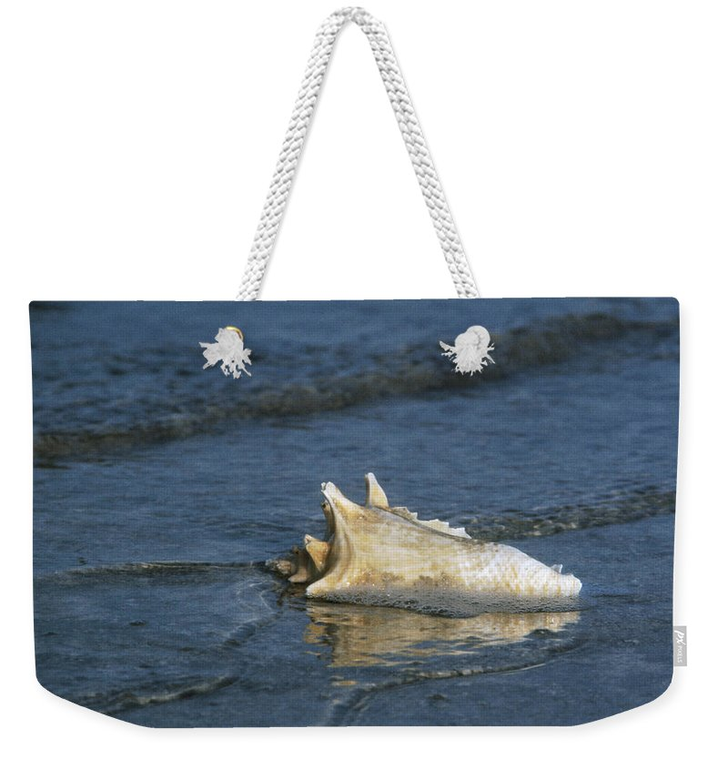 1973 Weekender Tote Bag featuring the photograph Conch Shell by Granger