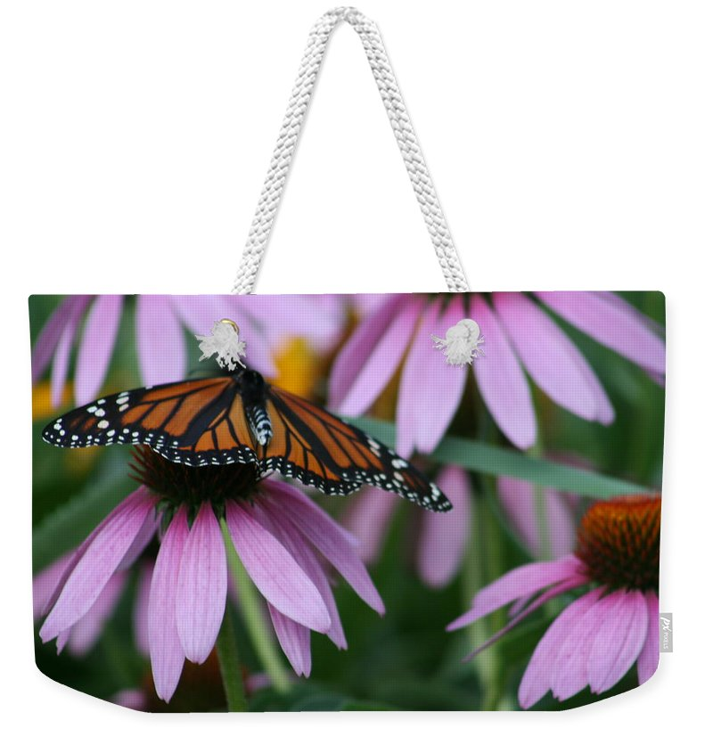 Nature Weekender Tote Bag featuring the photograph Cone Flowers And Monarch Butterfly by Kay Novy