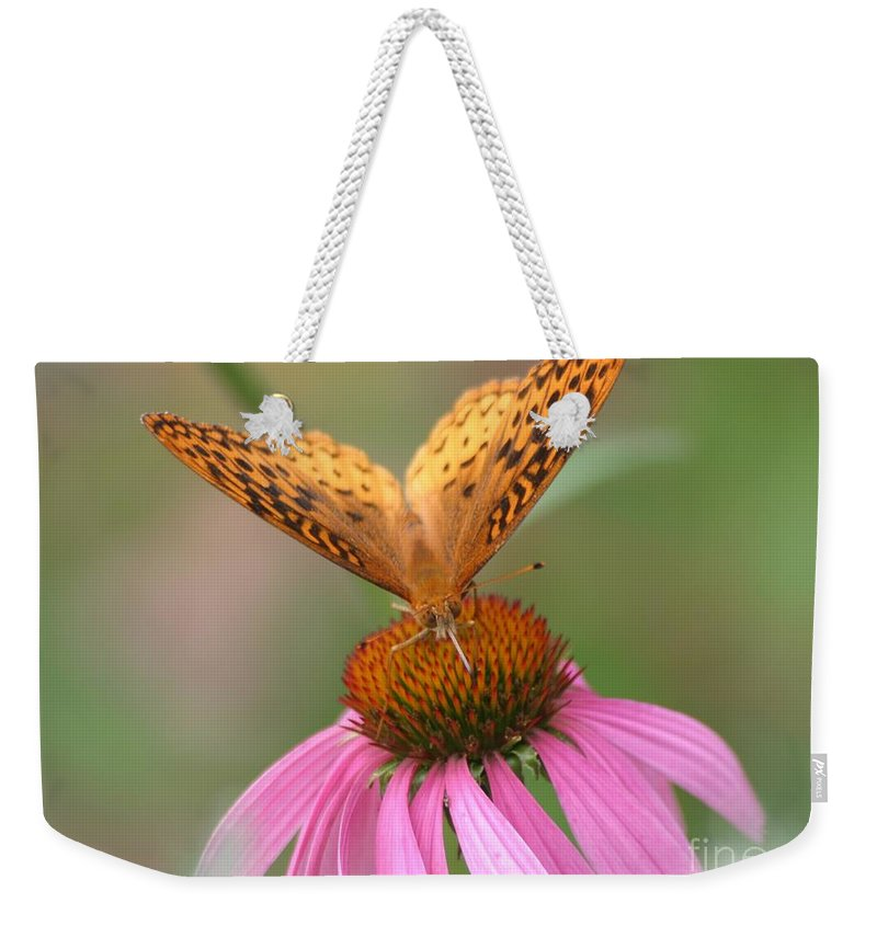 Butterfly Weekender Tote Bag featuring the photograph Coordinating Colors by Living Color Photography Lorraine Lynch