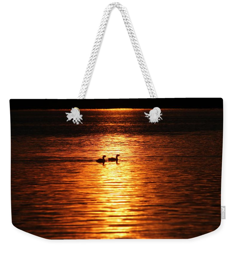 Coots Weekender Tote Bag featuring the photograph Coots In The Sunset by Ericamaxine Price