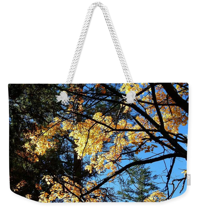 Autumn Weekender Tote Bag featuring the photograph Country Color 25 by Will Borden