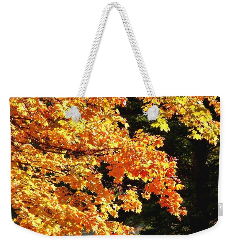 Autumn Weekender Tote Bag featuring the photograph Country Color 26 by Will Borden