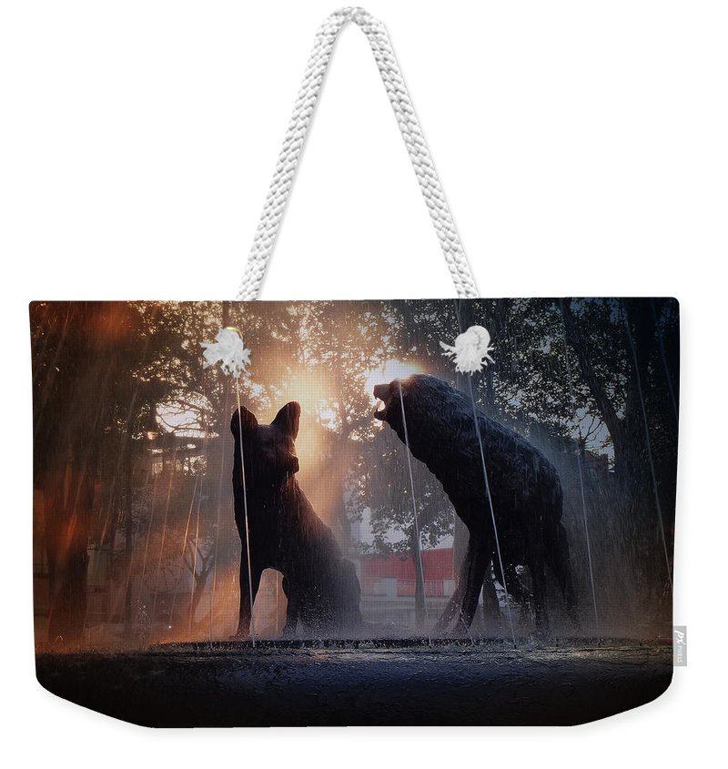 Coyotes Weekender Tote Bag featuring the photograph Coyoacan In Mexico City by Xueling Zou