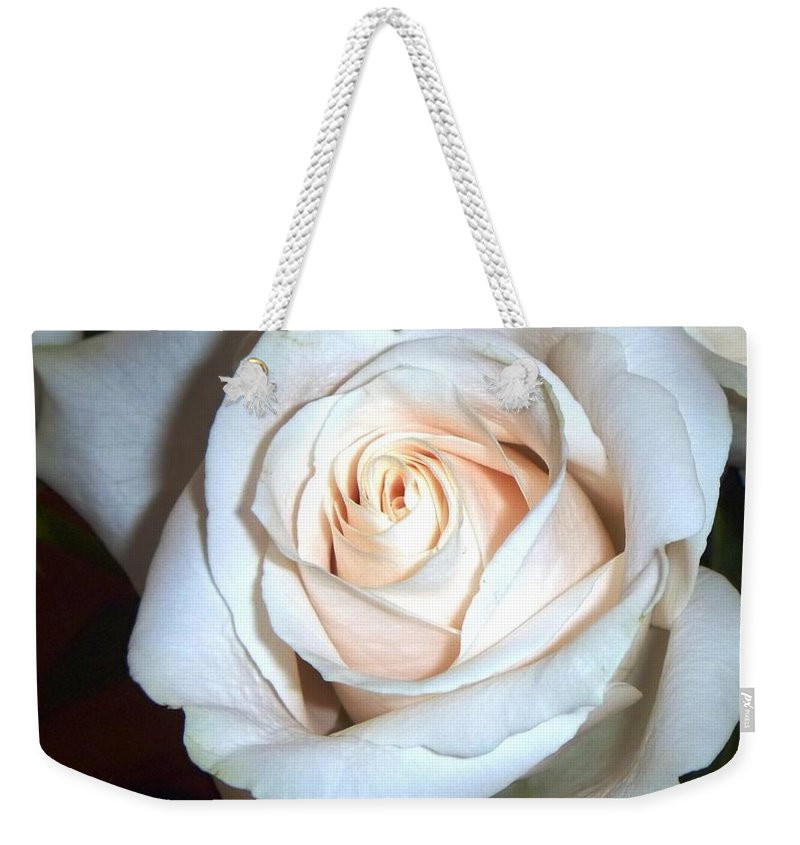 Creamy Rose Weekender Tote Bag featuring the photograph Creamy Rose by Alys Caviness-Gober