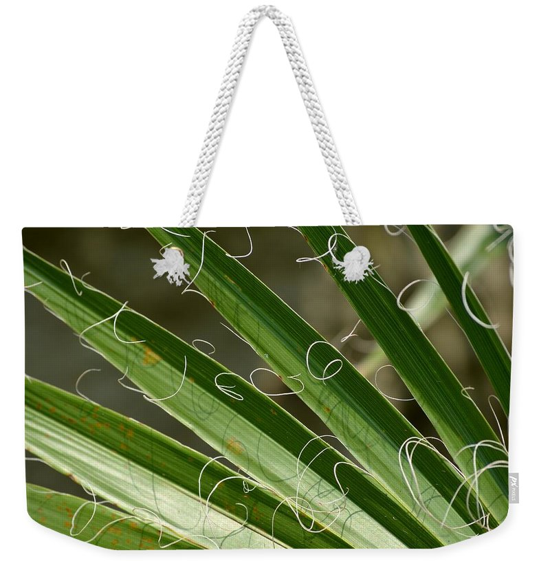 Curling Weekender Tote Bag featuring the photograph Curling Shadows by Maria Urso