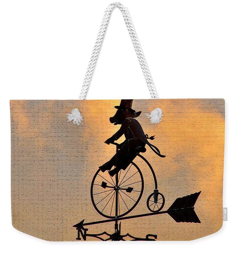 Art Weekender Tote Bag featuring the photograph Cycling Pig by David Lee Thompson