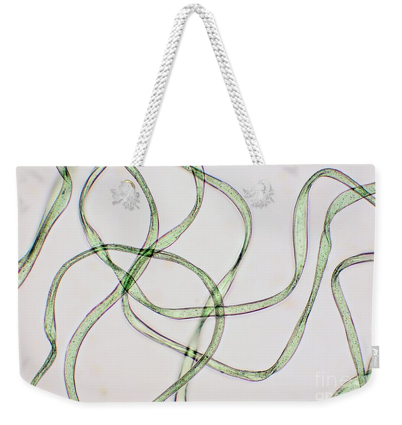 Fiber Weekender Tote Bag featuring the photograph Dacron Fibers by Ted Kinsman