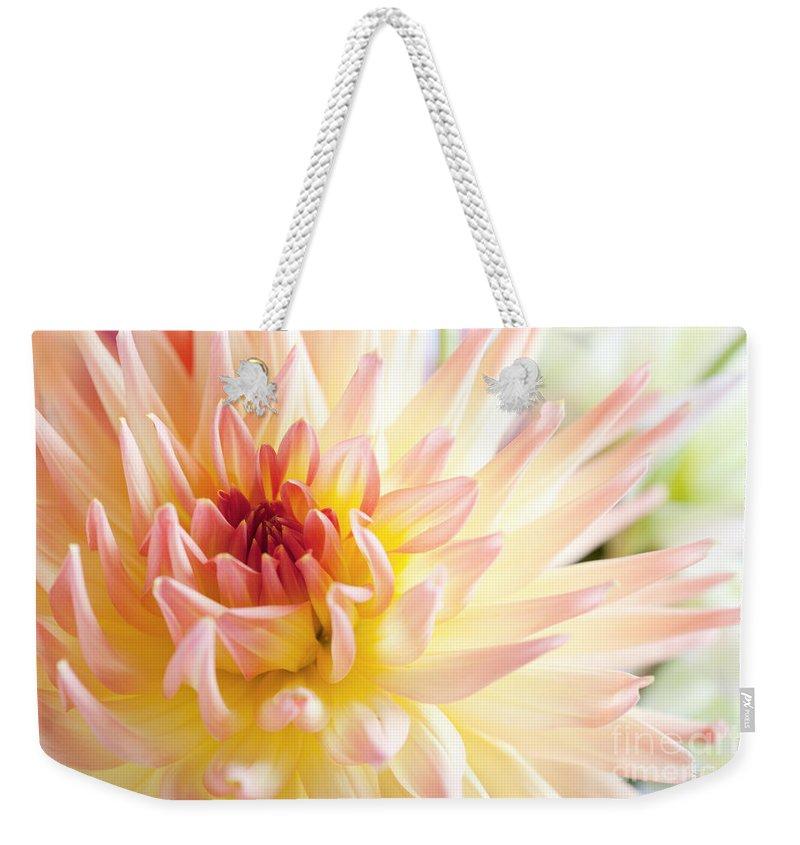 Dahlia Weekender Tote Bag featuring the photograph Dahlia Flower 01 by Nailia Schwarz