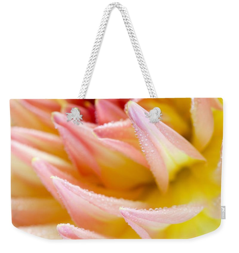 Dahlia Weekender Tote Bag featuring the photograph Dahlia Flower 13 by Nailia Schwarz