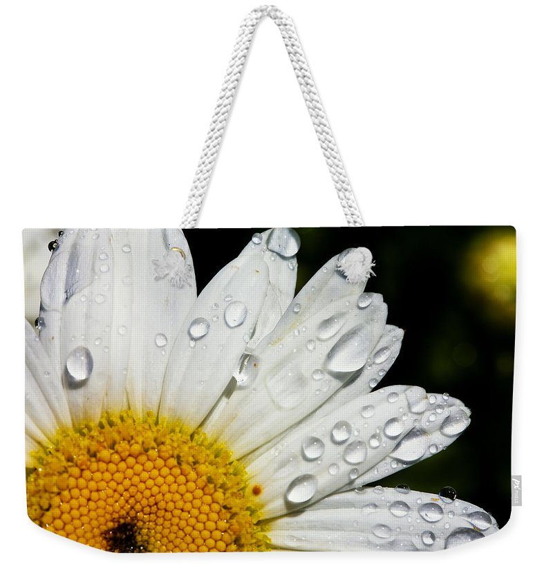 Floral Weekender Tote Bag featuring the photograph Daisy Drops by Rick Berk