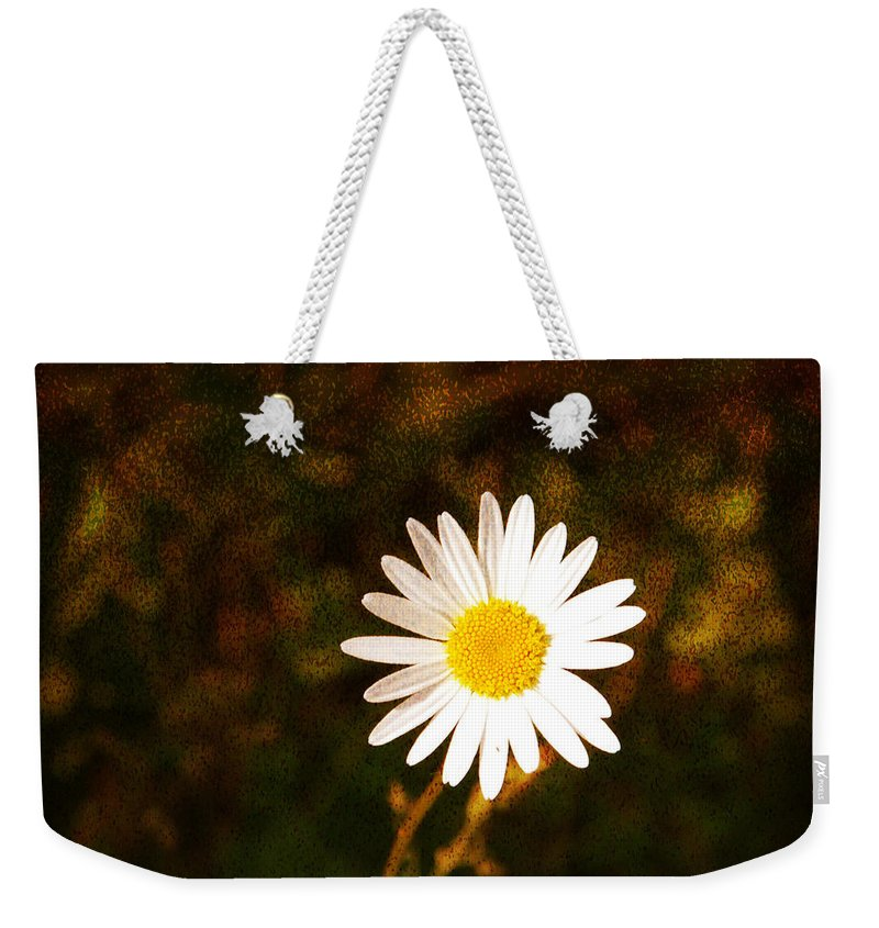 Daisy Weekender Tote Bag featuring the photograph Daisy Is Single But Not Lonely by Susanne Van Hulst