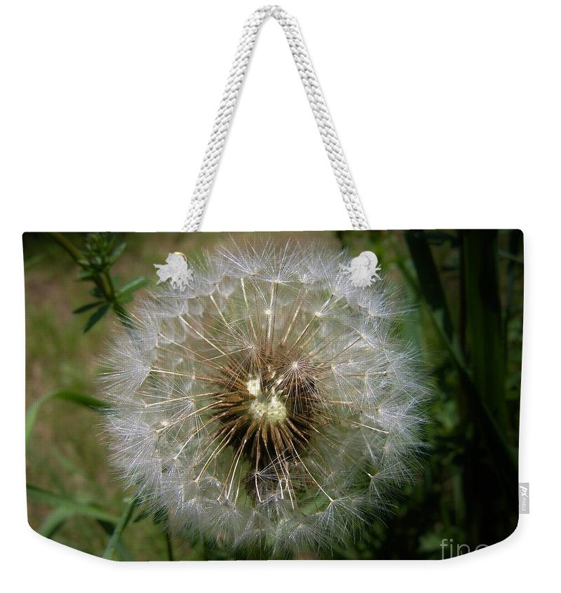 Dandelion Weekender Tote Bag featuring the photograph Dandelion Going To Seed by Sherman Perry