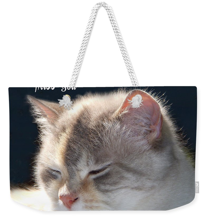 Cat Weekender Tote Bag featuring the photograph Daphne Cat Miss You by Aimee L Maher ALM GALLERY