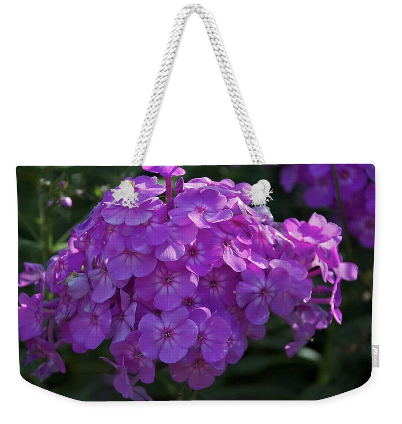 Flower Weekender Tote Bag featuring the photograph Dappled Light by Joseph Yarbrough