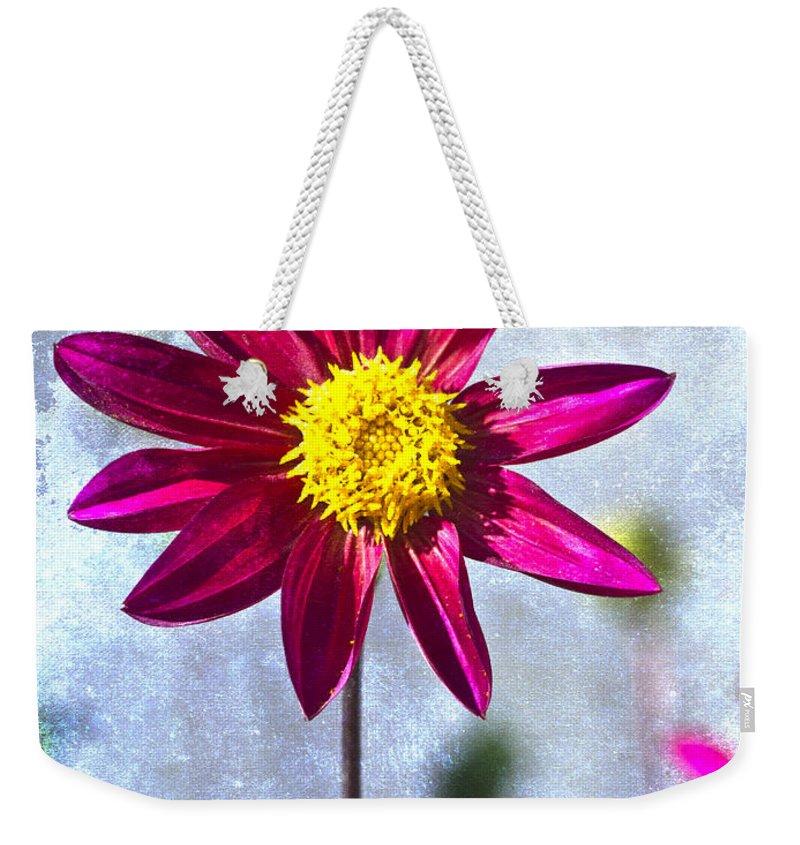 Designs Similar to Dark Pink Dahlia On Blue