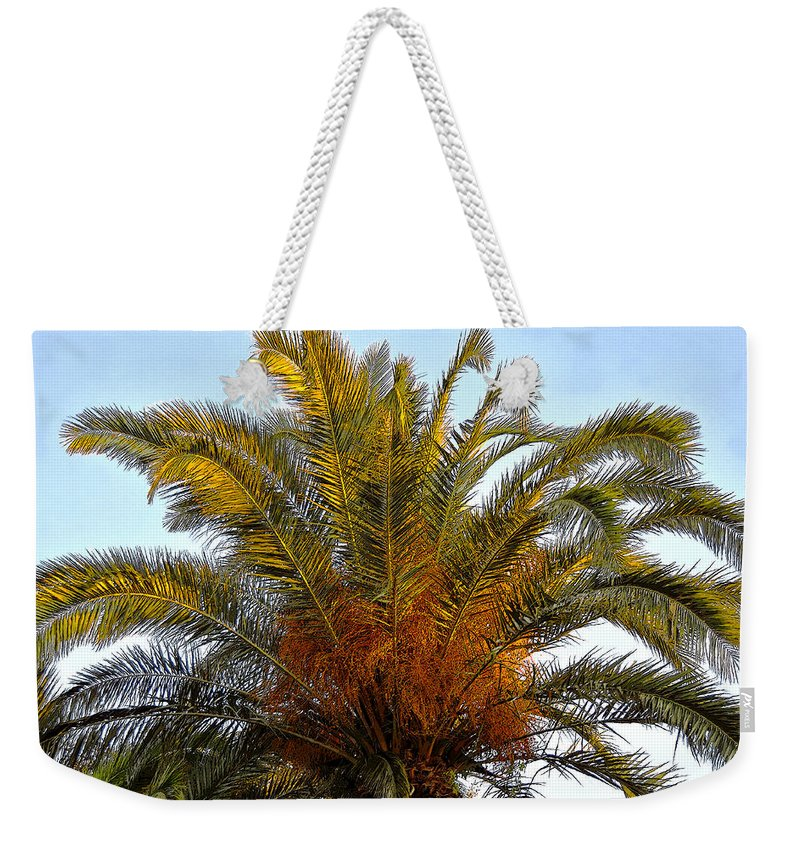 Date Palm Tree Weekender Tote Bag featuring the painting Date Palm by David Lee Thompson