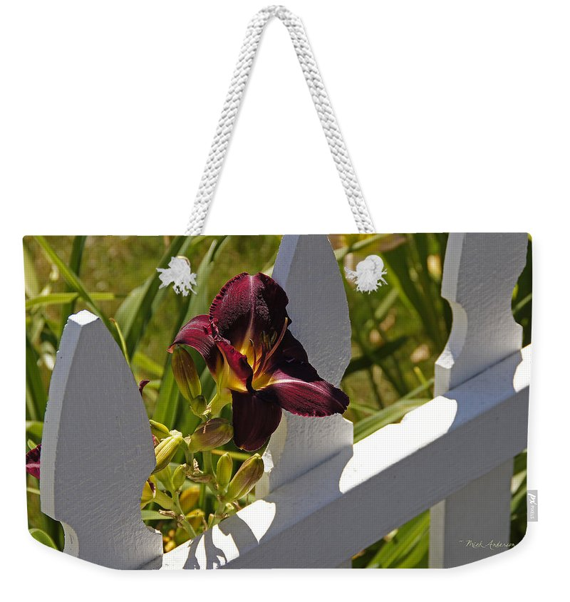 Day Lily Weekender Tote Bag featuring the photograph Day Lily And White Fence II by Mick Anderson