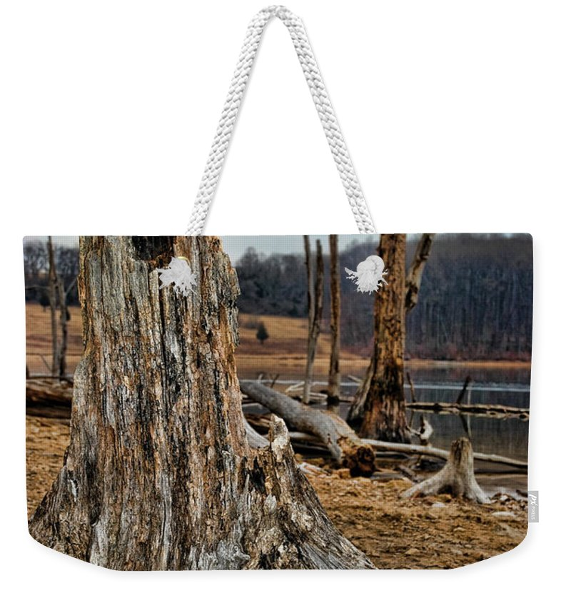 Dead Wood Weekender Tote Bag featuring the photograph Dead Wood by Paul Ward