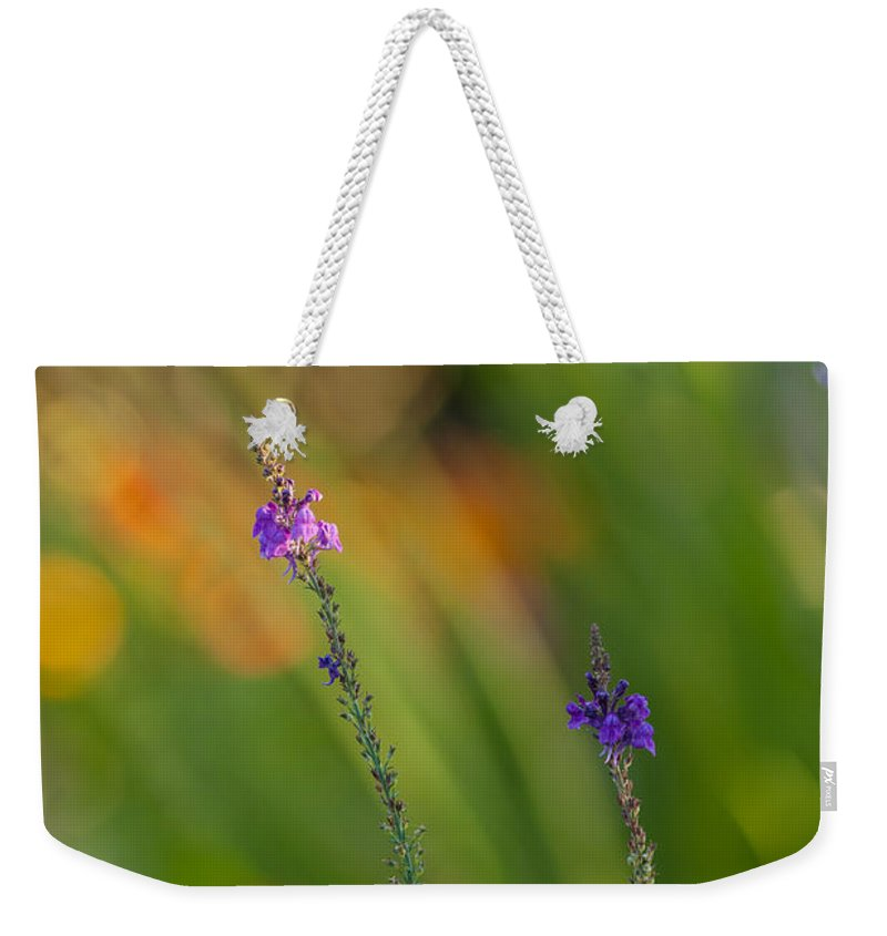 Flower Weekender Tote Bag featuring the photograph Delicate And Vivid by Mike Reid
