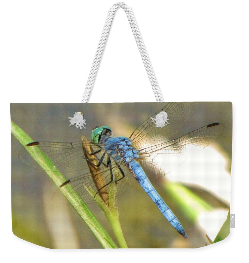 Dragonfly Weekender Tote Bag featuring the photograph Delicate Dragonfly by Michelle Cassella