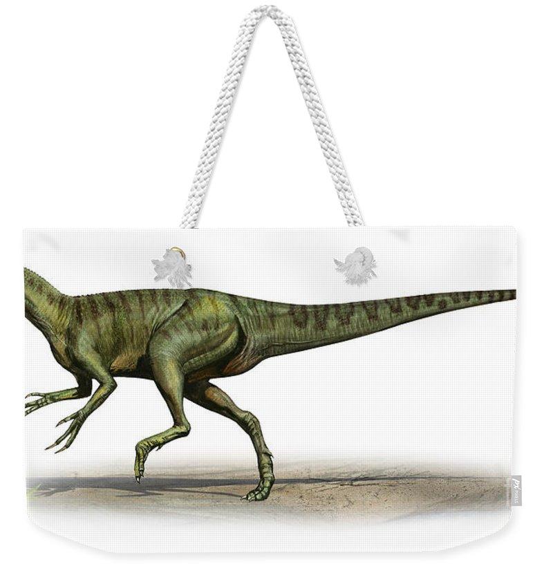 Horizontal Weekender Tote Bag featuring the digital art Deltadromeus Agilis, A Prehistoric Era by Sergey Krasovskiy