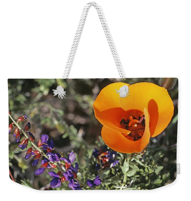 Wildflower Weekender Tote Bag featuring the photograph Desert Mariposa Tulip & Coulters by Gordon Wiltsie
