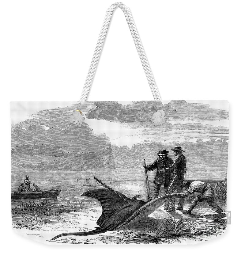 1858 Weekender Tote Bag featuring the photograph Devil Fishing, 1858 by Granger